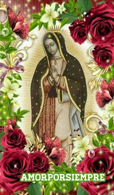 Catholic Pictures, Pictures Of Christ, Gangster Love Quotes, Lady Guadalupe, Day Of The Dead Art, Mama Mary, Our Lady Of Lourdes, Blessed Virgin Mary, Patron Saints