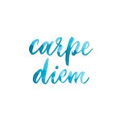 carpe diem -seize the day, live in the moment