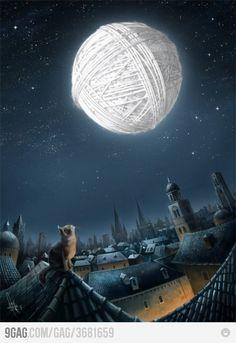 Gato e sua lua de lã
