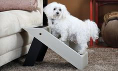 Groupon - Pet Store Portable Folding Pet Steps. Free Returns. in Online Deal. Groupon deal price: $24.99