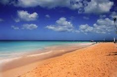 images with good contrast - Google Search Theory, Contrast, Google Search, Beach, Water, Outdoor, Image, Gripe Water, Outdoors