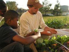 Distelrath Farms: an urban educational farm