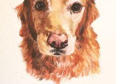 Watercolor pet portrait golden retriever