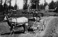 George Savage at Oshkosh  George Savage was a blacksmith.------Mabel Oregon