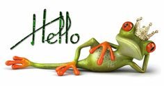The perfect Hallo Frog Hello Animated GIF for your conversation. Discover and Share the best GIFs on Tenor. Animated Frog, Animated Gif, Funny Frogs, Cute Frogs, Good Morning Good Night, Good Morning Quotes, Funny Images, Funny Pictures, Funny Pics