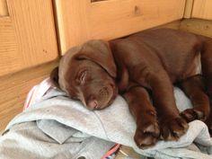 Little sleeper :)