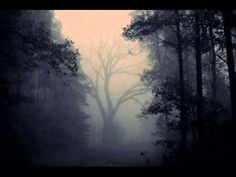 Ethereal Shroud  - Lost In The Cold, Gone Is The Light