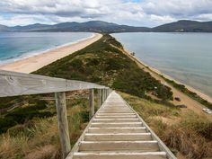 """Bruny Island, off Tasmania's southeastern coast, is actually a pairing of two islands—North and South Bruny—joined by the narrow isthmus named """"The Neck."""" Although """"The Neck"""" is the top tourist site, Bruny Island also delights with a massive national park, a historic lighthouse, a vineyard, an oyster farm, and coastline cruises focusing on the diverse and abundant ecology of the region."""