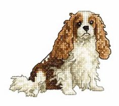 Animals Embroidery Design: Cavalier King Charles Spaniel from Vermillion Stitchery