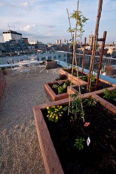 Ogród ziołowy na dachu, zielnik, taras na dachu, taras, balkon. Zobacz więcej na: https://www.homify.pl/katalogi-inspiracji/19988/taras-na-dachu-sposob-na-ogrod-w-sercu-duzego-miasta