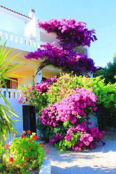 Greece Travel Inspiration - House in Alonissos Island, Greece