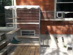 "KEEPING CATS SAFE: using  pet contained fencing in with the ability of a ""kitty"" door - in London Ontario .1"