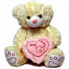 Do you want to send valentine Day special gift to India? Don't worry. Just log in to our website giftsngreets and find all the solutions to such problems.