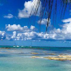 Île aux Cerfs, Maurice. #monilemaurice