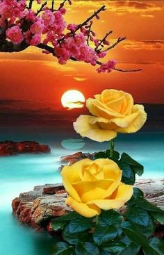 Good Morning sister and all,have a lovely day,God bless xxx take care and keep safe❤❤❤😊☺😘 Beautiful Scenery Pictures, Romantic Pictures, Flower Pictures, Nature Pictures, Pretty Pictures, Beautiful Images, Beautiful Rose Flowers, Beautiful Moon, Romantic Flowers