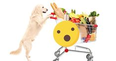 Consumers are demanding more from their pet food, increasingly looking for companies with a proven commitment to social causes and philanthropy. https://healthypets.mercola.com/sites/healthypets/archive/2017/10/26/ethical-pet-food.aspx?utm_source=petsnl&utm_medium=email&utm_content=art3&utm_campaign=20171026Z1&et_cid=DM163159&et_rid=97612966