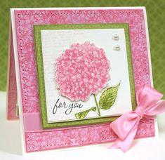 Hydrangea - yummy pink! Teneale