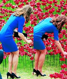 The Duchess of Cambridge planting a poppy at The Tower of London, August 5th 2014.