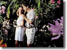 Διάφορα άρθρα/Αγάπη στον κήπο Love, Couple Photos, Couples, Amor, Couple Shots, Couple, Couple Pics, Romances