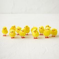 """Adorn Easter baskets or springtime centerpieces with this flock of darling chicks, each one made from bright yellow chenille.- Set of 12- Chenille, plastic- ImportedChick: 1.75""""H, 1.25""""W, 2""""L"""