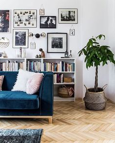 Blue sofa, gallery wall, book shelves, parquet floor... just everything, EVERYTHING!  see the full tour of this lovely...