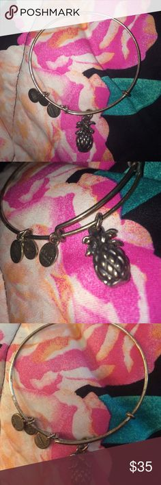 Pineapple Bracelet  Rare and hard to find since it is a retired bracelet. I havent worn this a lot but it is tarnished a little bit since I've had it for years, I've always taken care of my Alex and Ani bracelets so the only reason it's tarnished is because I've had it for a long time. It's still in great condition but the reason it's priced high is because it's rare, I'm always willing to accept offers so don't let the price scare you off  Alex & Ani Jewelry Bracelets