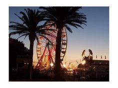 Ventura County Fair is coming up at the start of August!
