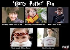 What the World Thinks of Me[me]: 'Harry Potter' Edition