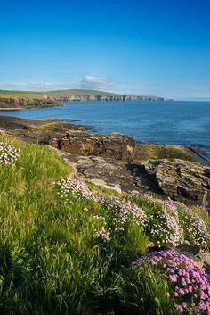Westray, Orkney Islands, Scotland