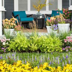 Front yard landscaping. Painted Stair Risers, Water Wise Landscaping, Yard Landscaping, Planting Plan, Fall Planting, Outdoor Living, Outdoor Decor, Outdoor Spaces, Outdoor Curtains