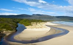 Visit Australia – Bruny Island – Lonely Planet Take a Bruny Island Safari day or overnight tour Places Ive Been, Places To Go, Cloudy Bay, Bruny Island, Visit Australia, Places Of Interest, Adventure Is Out There, Tasmania, Lonely Planet