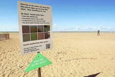 Feds: Lake Erie algae bloom in 2015 was largest on record