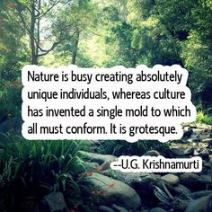 Nature is busy creating absolutely unique individuals, whereas culture has invested a single mold to which all must confirm. It is grotesque ~ UG Krishnamurti Great Quotes, Quotes To Live By, Me Quotes, Inspirational Quotes, Wisdom Quotes, The Words, Jiddu Krishnamurti, Words Worth, Quotable Quotes