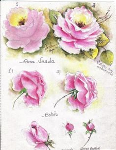 Pin by Susan Carrell on Painting | Watercolor paintings