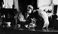 Actor James Dean (1931-1955), 1955.