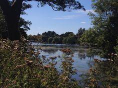 Cardiff Roath park