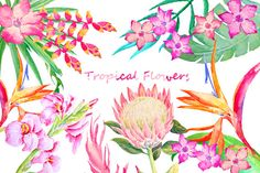 Hand painted watercolor tropical flowers and leaves by CornerCroft