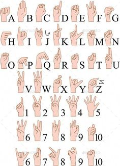 Buy Sign Language A To Z Numbers Hands Pack by LironPeer on GraphicRiver. Vector illustrations pack of sign language ABC and numbers. Sign Language Phrases, Sms Language, Sign Language Alphabet, American Sign Language, Language Lessons, Sign Language For Kids, Learn Sign Language Free, English Sign Language, Baby Sign Language Chart