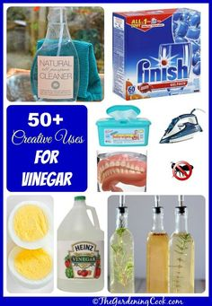 Tried and true useful ways to use vinegar around the house!