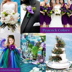 Peacock Wedding Colors | maybe without the peacock feathers...I love the colors!