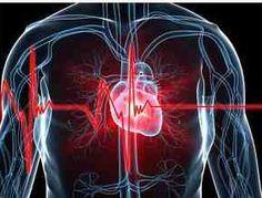 Níveis subótimos de vitamina D aumentam significativamente o risco de doenças cardiovasculares