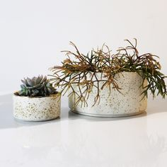 White & Gold Speckled Ceramic Planter.  Hand Made in Queensland.  (The General Store Furniture Co)