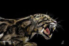 Leopard by slavicisanna