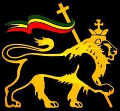 The conquering lion of tribe of Judah! - jahrastafar__i - Fotolog