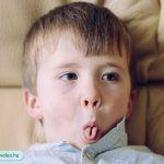 A gyerekek két és három év közötti időszakát elég szerencsétlen módon dackorszaknak nevezték el, mert a szülő azt tapasztalja, hogy a gyerek sok mindent nem akar csinálni, vagy sokszor pontosan fordítva csinálja a dolgokat, mint ahogyan a szülő szeretné. Face, The Face, Faces, Facial