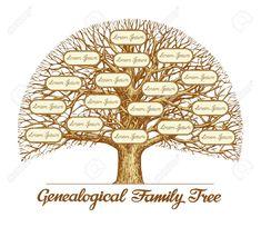 Vintage Genealogical Family Tree. Hand drawn sketch illustration Stock Vector - 57887839