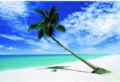 ocean photos - Google Search