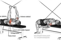 Supine cable reverse fly exercise