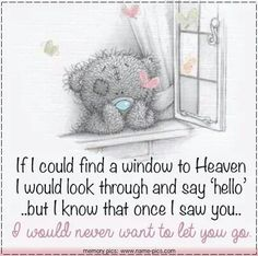 "If I could find a window to Heaven, I would look through and say ""hello"" ...but I know that once I saw you...I would never want to let you go."