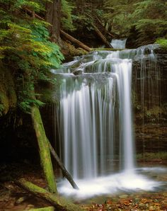 ✯ Fern Falls, Coeur d' Alene National Forest - Idaho